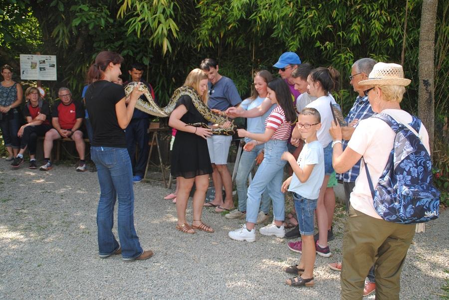Terrarium de Kerdanet - Journée des Loisirs